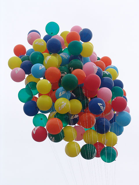 Printed disney's up balloons